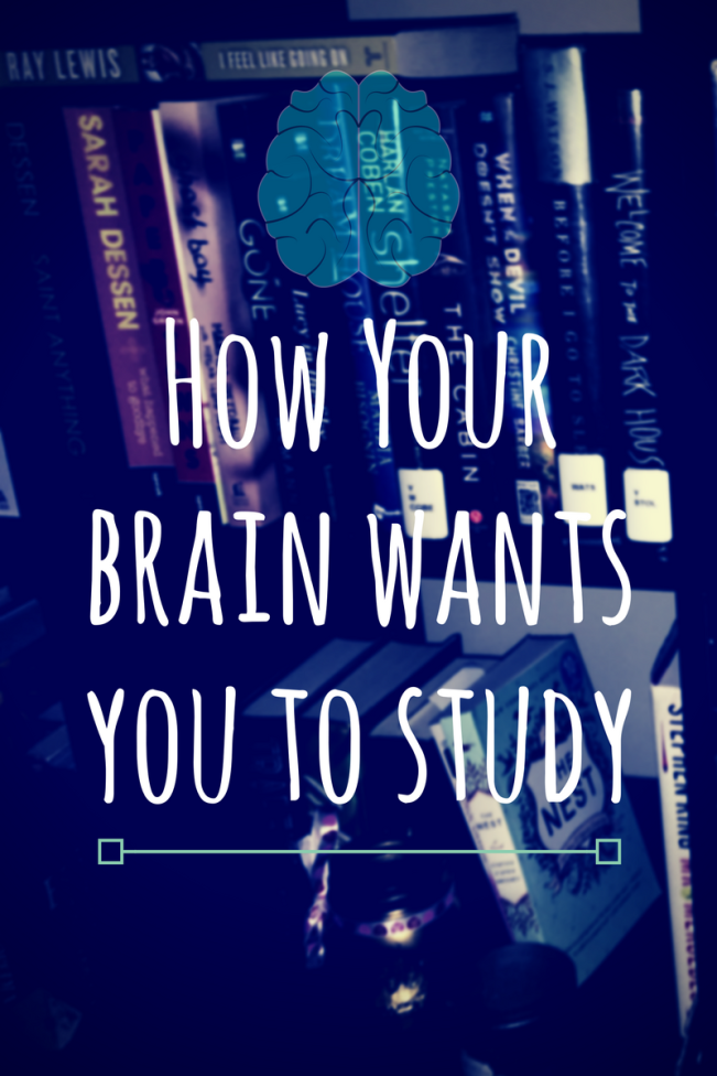 How Your brain wants you to study